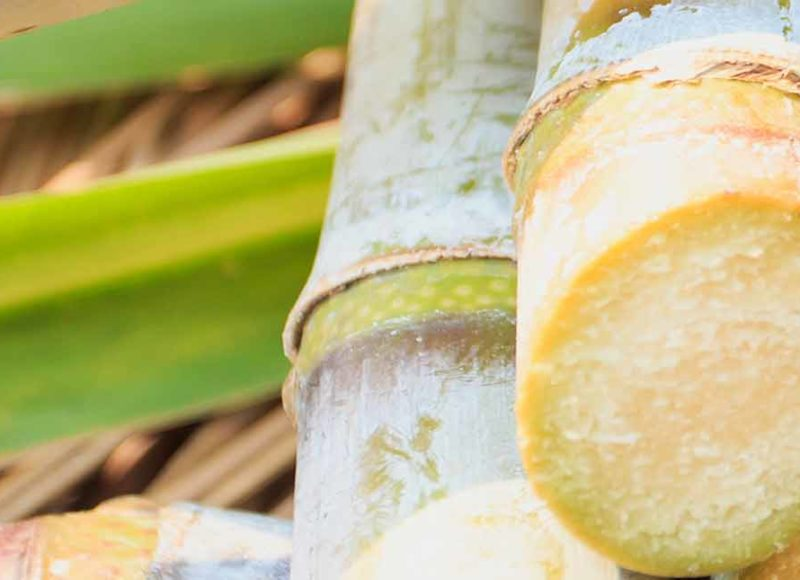 Thailand – Record 2017/18 sugar output of over 12 million tonnes