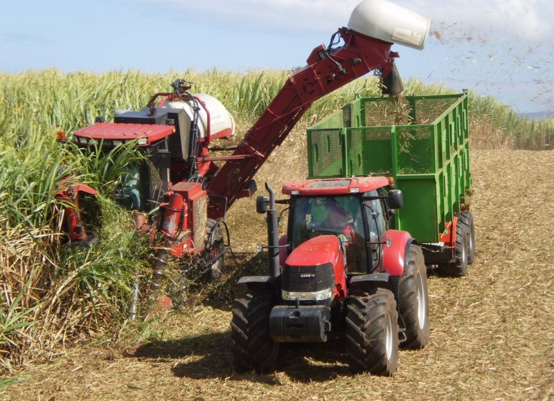 Sugar Cane Harvester : Chinese government to invest us bln make the