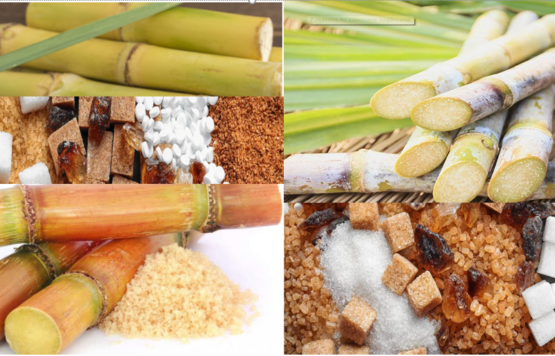 Cameroon – Two sugar factories to receive an investment of